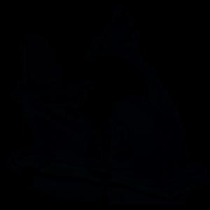 Rower poziomy firmy Kettler Giro R 3